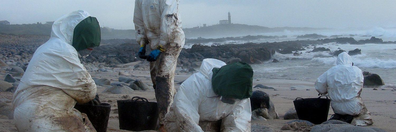 Voluntarios limpian una playa de chapapote.