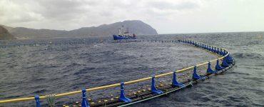 Granja de acuicultura.