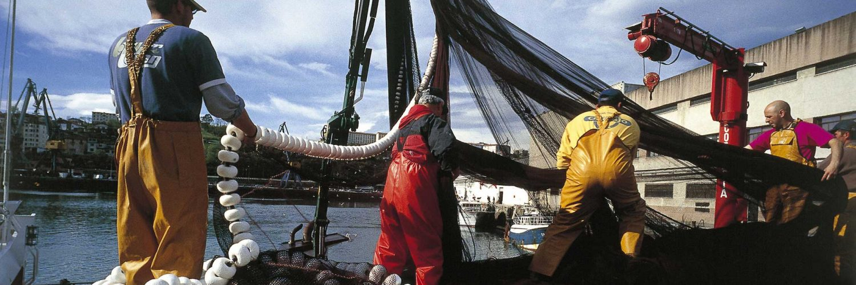 Pescadores recogen las redes.