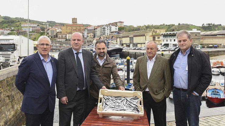 Comienzo de la costera de la anchoa en Euskadi.