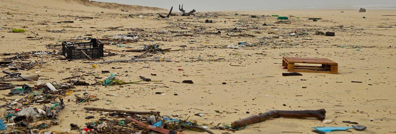 Basuras marinas depositadas por las olas en una playa.