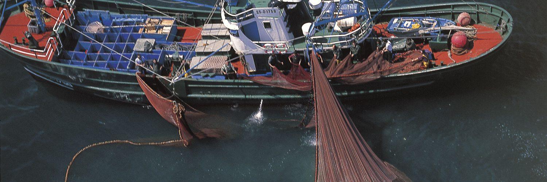 Barco de cerco faenando en el Cantábrico.