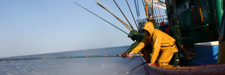 Pesca artesanal del atún.