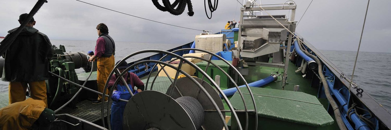 Pescadores preparan la cubierta del barco para la pesca del verdel.